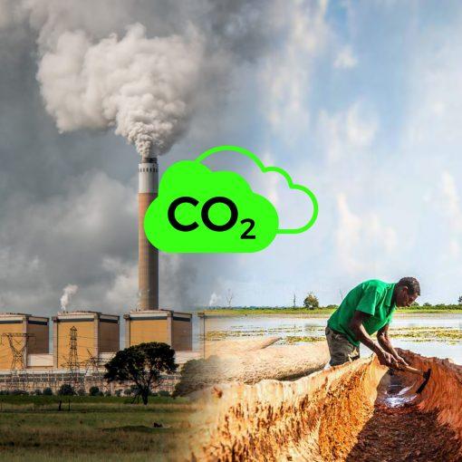 Cover zur GREEN LIFE Podcast Folge CO2 Kompensation