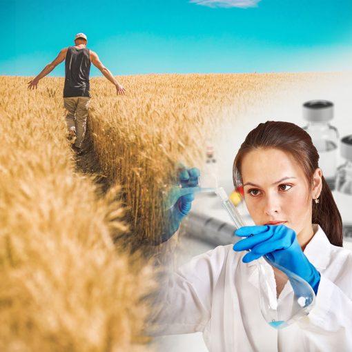 Cover zur Green Life Klimaschutz Podcast Folge World Food - Das Essen von morgen